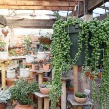 the garden gallery in morro bay ca