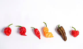 Pepper Chart 2017 Scoville Scale How Hot Would You Go On The Chilli Pepper