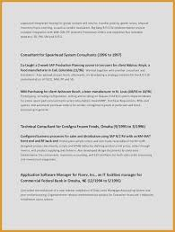 Sample Technical Resume Simple Software For Resumes Simple Resume Examples For Jobs