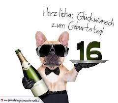 Sprüche Zum Geburtstag 16 Lustig Royaldutchgenetics