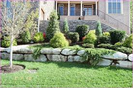 Small Picture Creative of Front Yard Landscaping Ideas Without Grass Front Yard