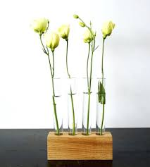 test tube decor flower vase set home garden patio moss twig experiment with  your daily this