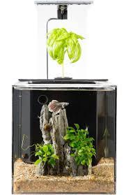 office desk aquarium. Amazon.com : EcoQubeC Aquarium - Desktop Betta Fish Tank For Living Office And Home Décor Garden \u0026 Outdoor Desk I