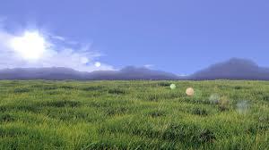 grass field. Grass Field By 50Groszy