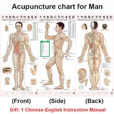 Us 7 5 25 Off Standard Meridian Acupuncture Points Chart And Zhenjiu Moxibustion Acupoint Massage Chart For Head Hand Foot Body Health Care In