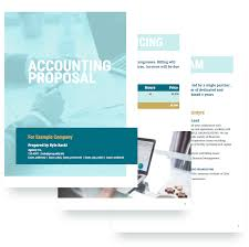 Free Proposal Template Accounting Proposal Template Free Sample 14