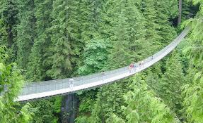 Image result for suspension bridge
