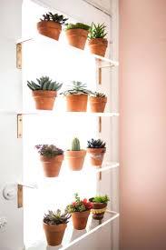 plant-shelves-diy-shelf-design-ideas-outdoor.jpg