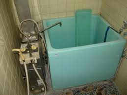 The old bath-tub pre renovation
