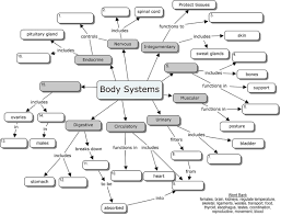 Introduction To Anatomy And Physiology Anatomycorner