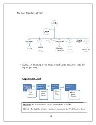 Davita Organizational Chart Final Project Report 1