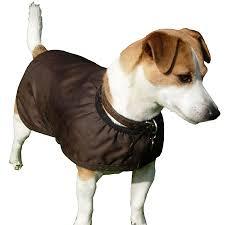 thermatex waterproof dog coats