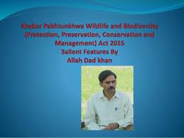 essay on wild life protection essay on wild life protection short essay on wild life protection world s largest