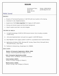 Delighted Sap Mm Resume Sample For Freshers Pictures Inspiration