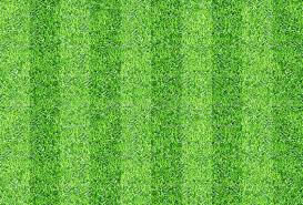 grass texture game. Exellent Game Download Seamlessly Green Grasses Texture Background Stock Image   Of Grasses Outdoor Inside Grass Game R