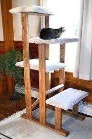 Diy cat playhouse Para Gatos Diy Cat Playground Indoor Tarotmystic Diy Cat Playground Indoor Tarotmystic