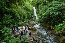 linda robert wedding la paz waterfall gardens costa rica linda robert wedding la paz waterfall gardens costa rica