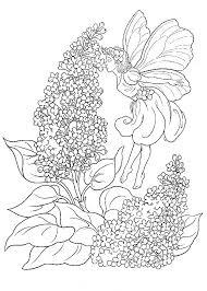Kleurplaten Voor Volwassenen Bloemen Google Zoeken Kleurplaten
