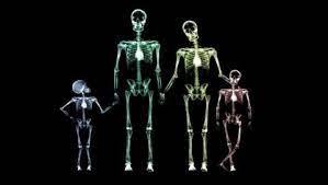 Un dispositivo del MIT dará visión de rayos X por 300 dólares | Tecnología  - ComputerHoy.com