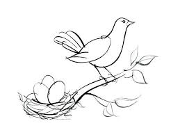Free Printable Coloring Pages Birds Bird Nest Coloring Page Robin