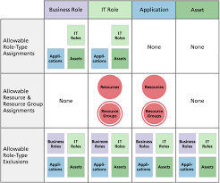 chapter roles and resources the business role and it role can contain it role application and asset role
