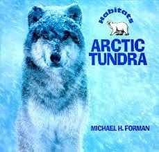 gr level n arctic tundra p