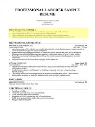 Things To Put On A Resume Impressive What To Put In A Resume Profile Nmdnconference Example