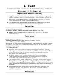 Resume Usa Vorlage Therpgmovie