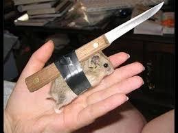 Сталь для <b>ножа</b>, из какой стали делать <b>нож</b>, из чего сделать <b>нож</b> ...
