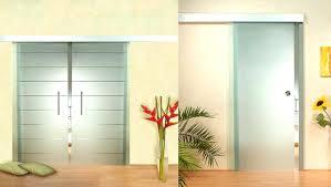 praiseworthy dog door for glass door dog doors for sliding glass bunnings things when installing the