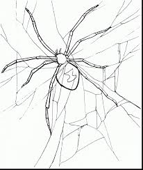 Small Picture fantastic black widow spider coloring page with black widow