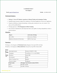Sample Resume In Ms Word Format Free Download Refrence 25 Resume