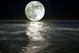 Resultado de imagen para los velos de la luna