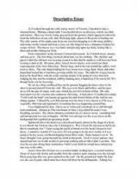 descriptive essay beach using five senses  descriptive essay beach using five senses