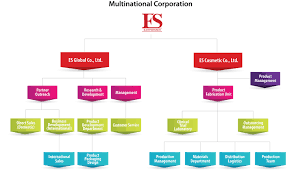 Department Organizational Structure Online Charts Collection