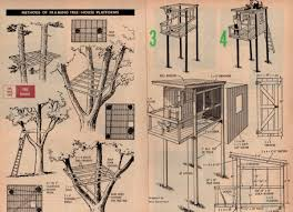 Treehouses For Adults  Tree Houses For Adults 40 Pics  Tree How To Build A Treehouse For Adults