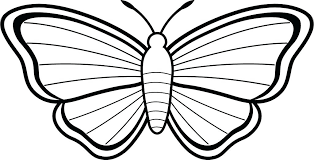Butterfly Coloring Pages For Adults Printable Pdf Cartoon Flowers