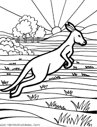 Small Picture Download Coloring Pages Kangaroo Coloring Page Kangaroo Coloring