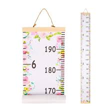 Beinou Baby Growth Chart Ruler For Kids Wood Frame Height Measure Chart 7 9 X 79 Canvas Pink Flower Hanging Height Growth Chart For Baby Nursery