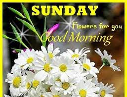 Good Morning Sunday Quote Best of 24 Good Morning Sunday Quotes Sunday Quotes