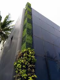 Small Picture Living green walls India should look to vertical gardens to
