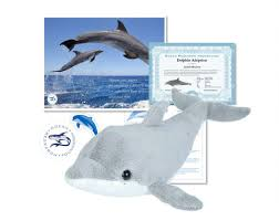 adopt a wild dolphin and help our researchers study and protect them beautiful quality presentation makes a very meaningful gift that helps protect wild