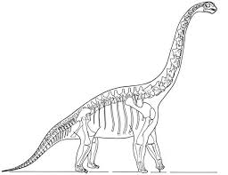 Small Picture This picture shows a reconstruction of a Brachiosaurus skeleton
