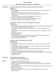 Solutions Product Manager Resume Samples Velvet Jobs