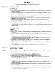 Senior Auditor Resume Samples Velvet Jobs