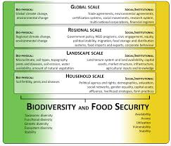 essay biodiversity essay com agree or disagree essay generally  a social ecological perspective on food security and biodiversity a social ecological perspective on food security