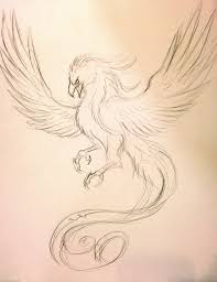 Drawings Of Phoenix Collection Of 25 Phoenix Tattoo Sketch