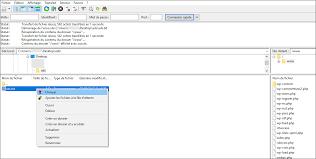 le fichier est bien en place sur votre site il vous suffit de taper l adresse suivante dans votre navigateur s nomdevotresite ads txt