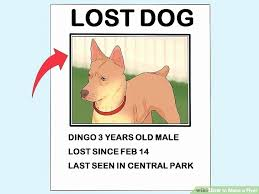 how to make lost dog flyers printable lost dog flyers fresh lost dog template flyer free poster