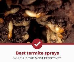 Download White Ant Killer Spray Images